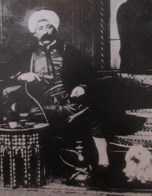 1-turkenhirsch
