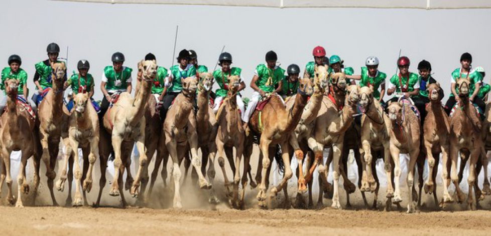 Sheikh+Sultan+Bin+Zayed+al+Nahyan+Camel+Festival+g2U76q539ygl