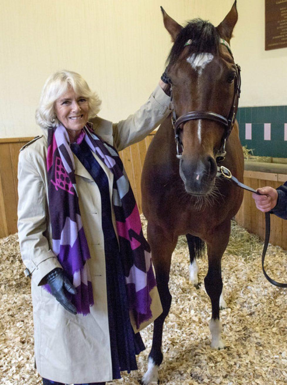 Duchess+Cornwall+Meets+Racehorse+Frankel+Newmarket+3Sq57kULSSJl