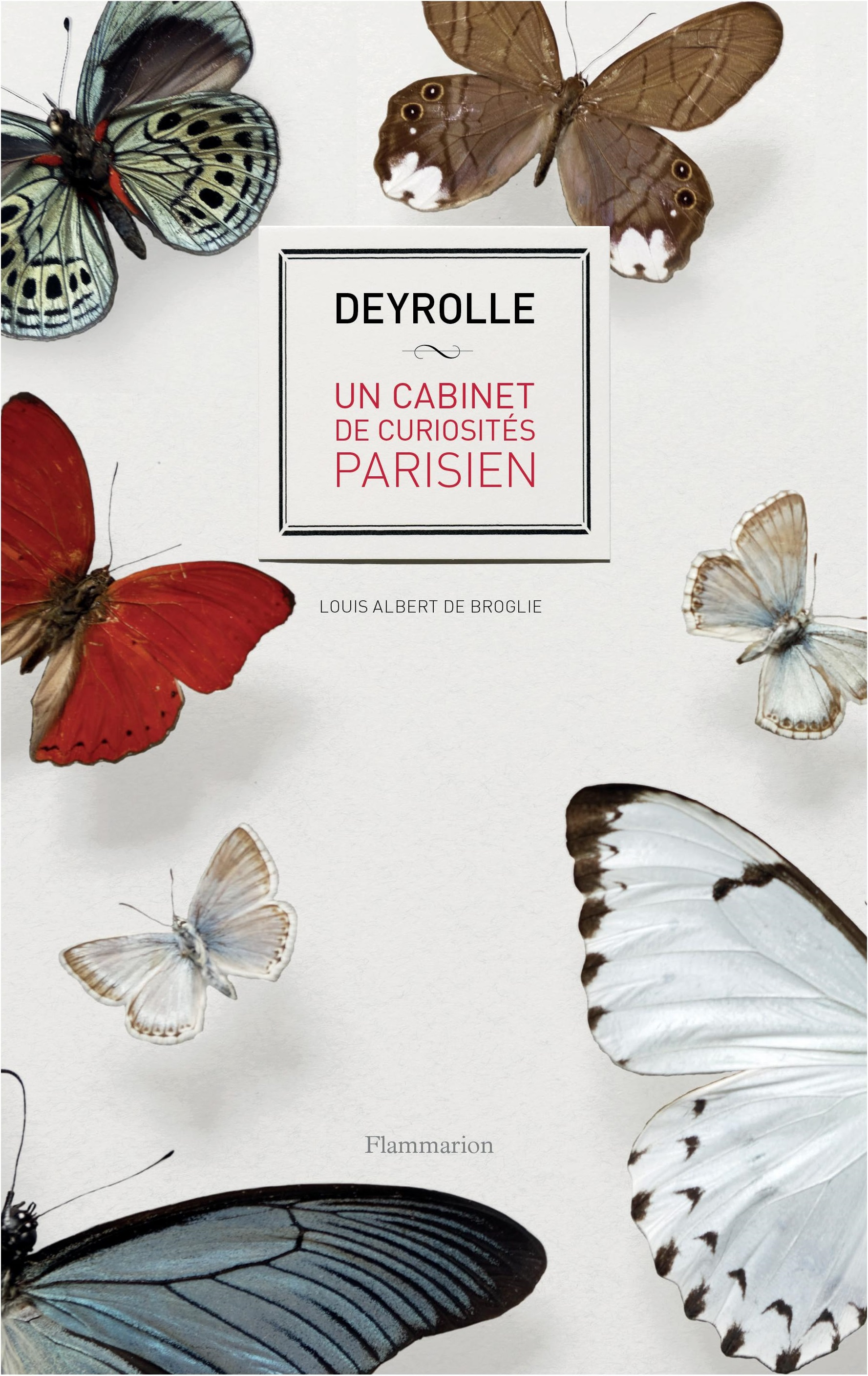 livre deyrolle un cabinet de curiosit s parisien noblesse royaut s. Black Bedroom Furniture Sets. Home Design Ideas