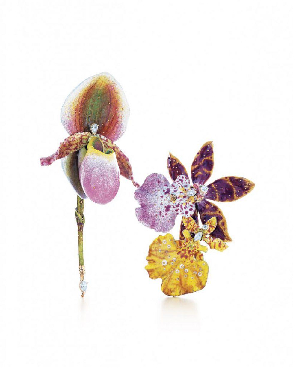 Tiffany-Orchid-Brooc_637