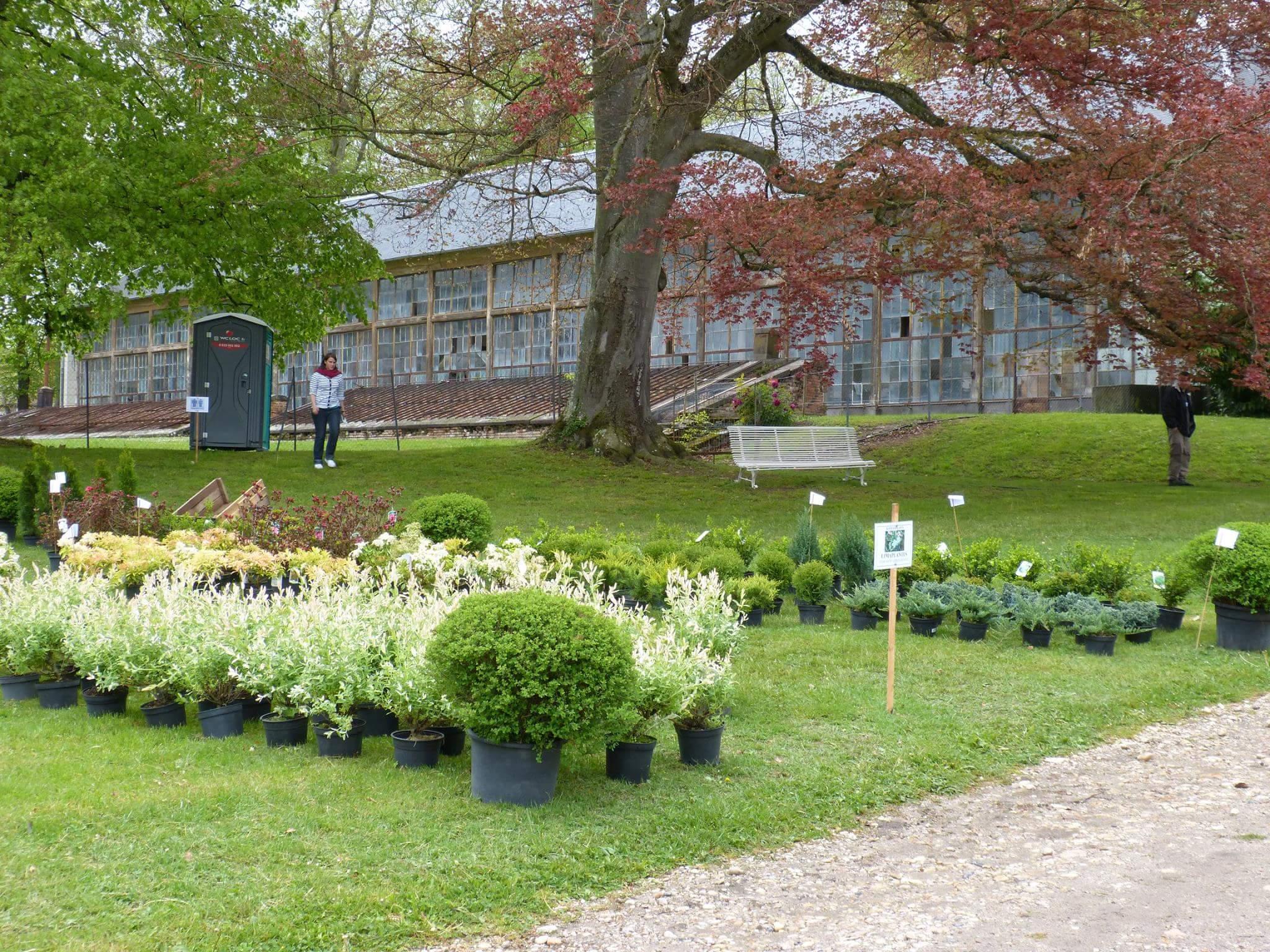 Salon du jardin au domaine royal de randan noblesse for Au jardin des plantes chambery