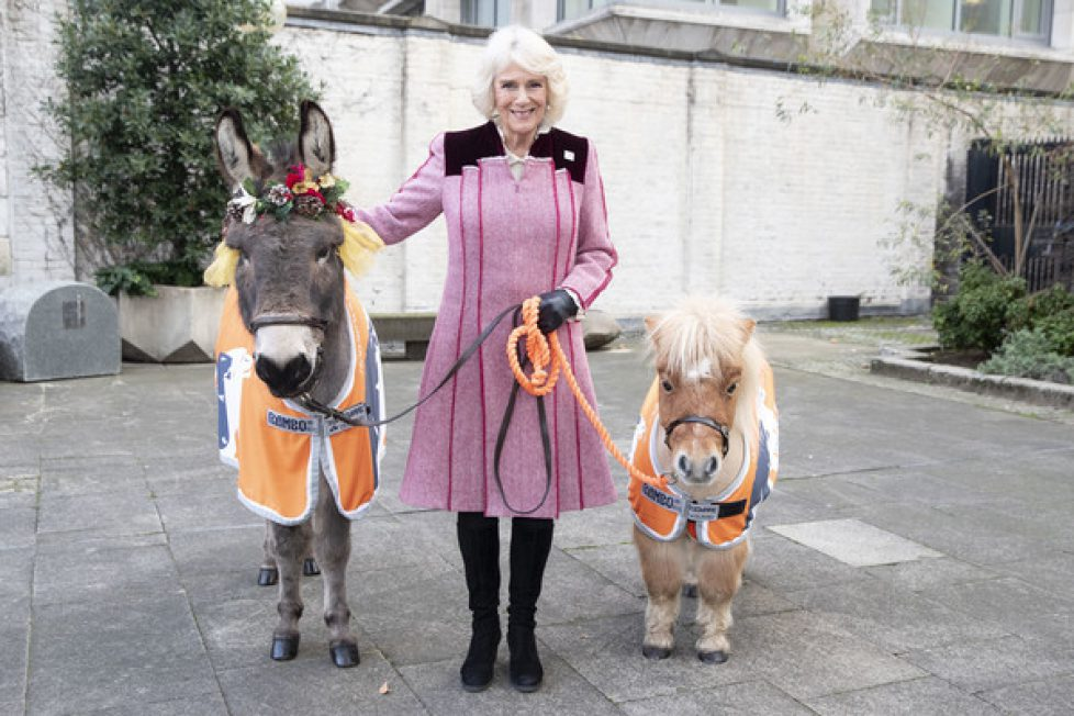 Camilla+Duchess+Cornwall+Attends+Animal+Welfare+BAuy2MvQm3Ul