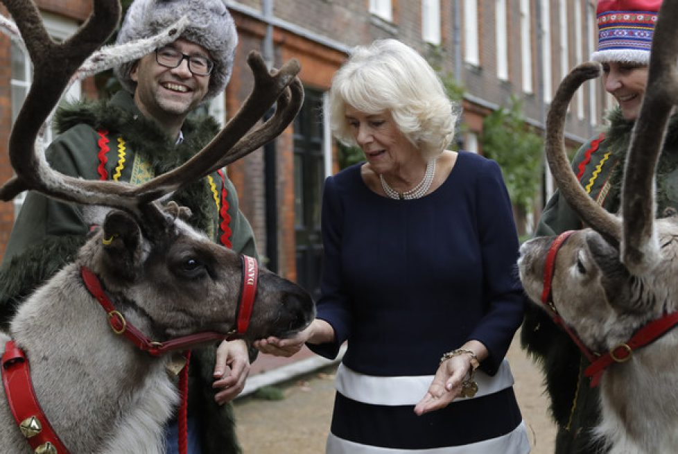 Duchess+Cornwall+Decorates+Clarence+House+_Lqyay1RXcnl