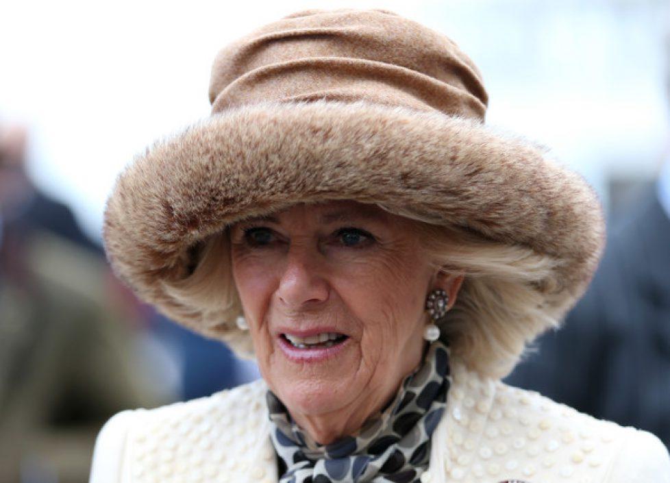 Duchess+Cornwall+Attends+Cheltenham+Festival+eHXOUucVDpwl