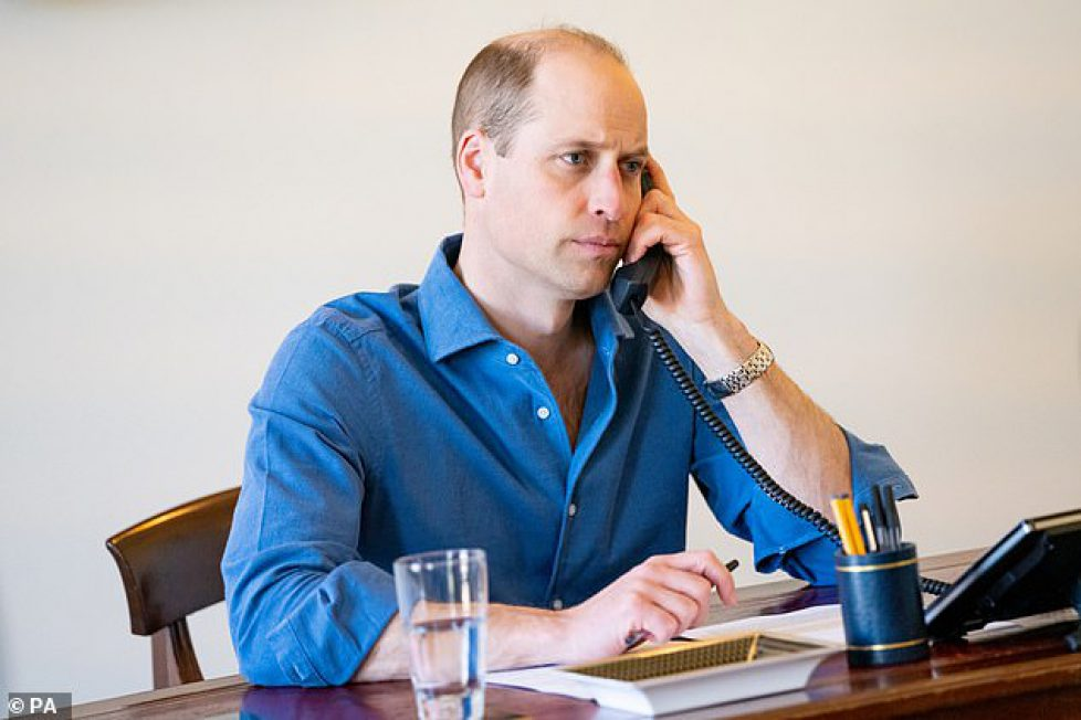 41417094-9442465-The_Duke_of_Cambridge_s_praise_came_during_a_call_to_a_consultan-a-20_1617739679709